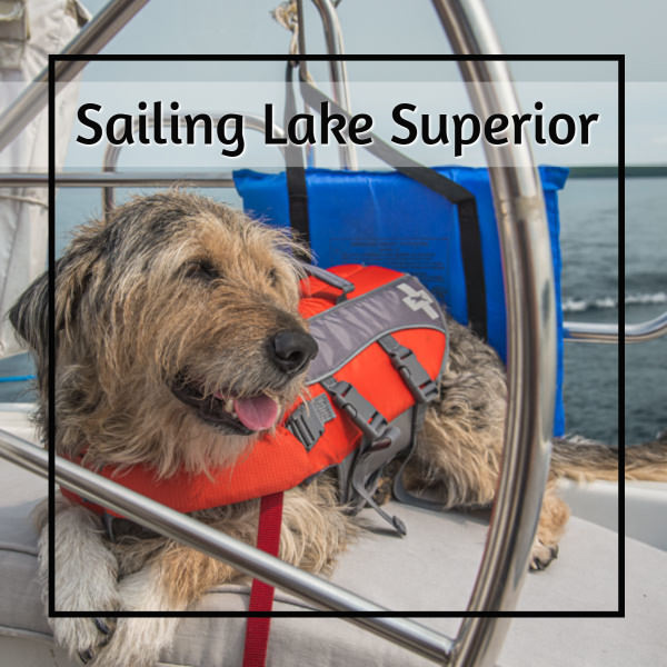 dog with a life jacket on a sailboat