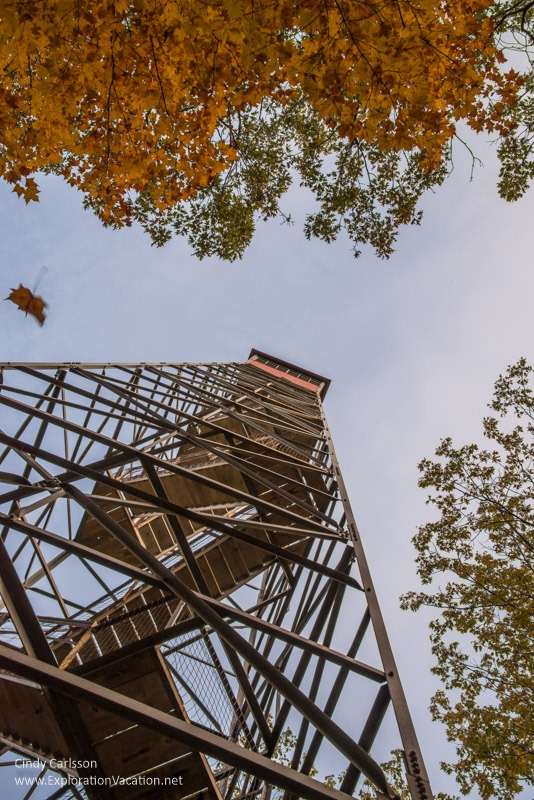 Fall at the tower in Kathio Mille Lacs State Park
