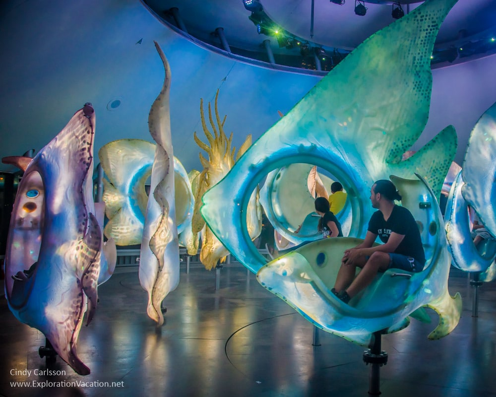 New York City S Sea Glass Carousel Exploration Vacation
