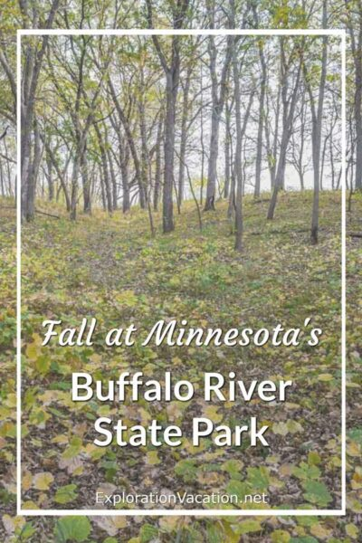 """woodland with leaves on ground and title """"Fall at Minnesota's Buffalo River State Park"""""""