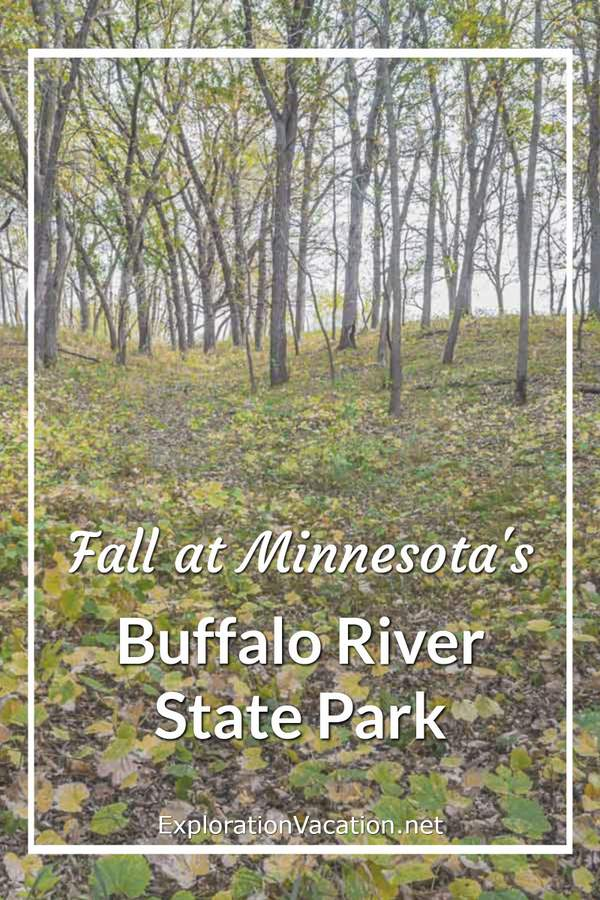 "woodland with leaves on ground and title ""Fall at Minnesota's Buffalo River State Park"""