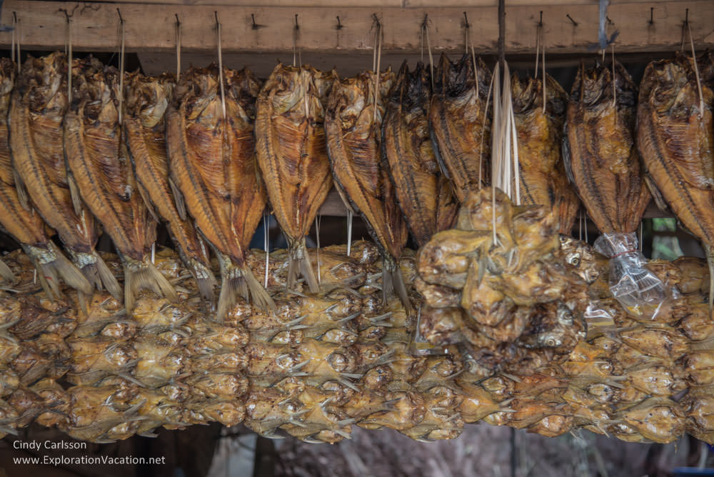 dried fish at Nam Ngum market
