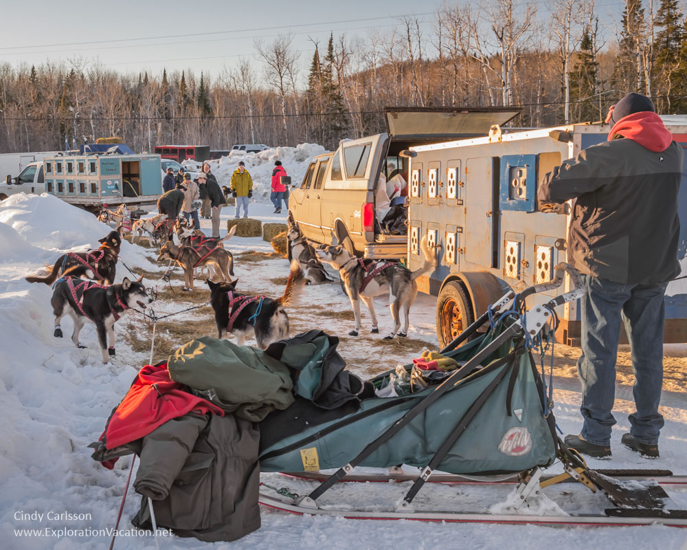 vehicles, sleds, and dogs