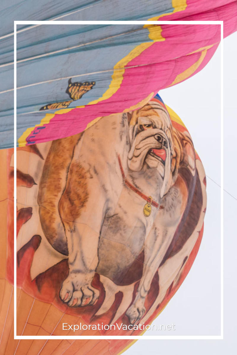 hot air balloon with painting of a bulldog