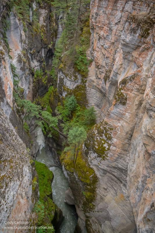 Maligne Canyon in Jasper Canada - ExplorationVacation.net