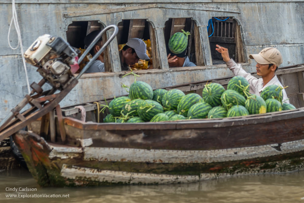melons at Cai Rang floating market Vietnam - ExplorationVacation.net