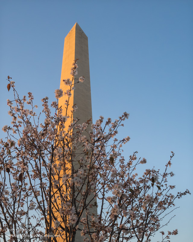 Washington Memorial Washington DC - www.explorationvacation.net