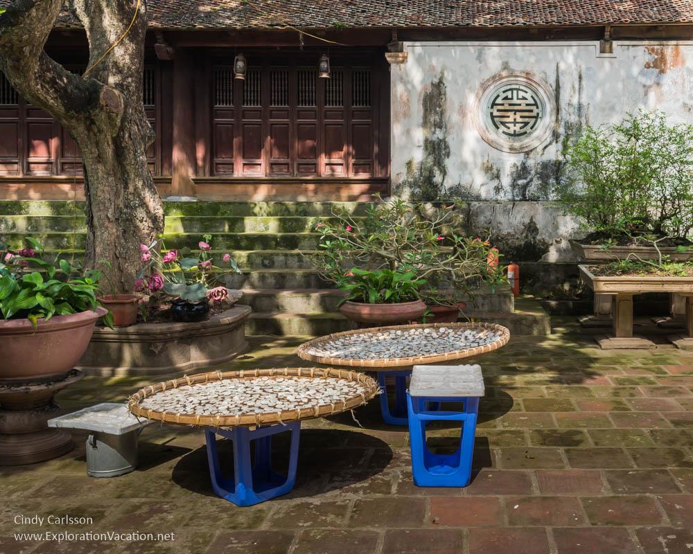drying crops at Mia Pagoda Duong Lam village Vietnam - www.ExplorationVacation.net