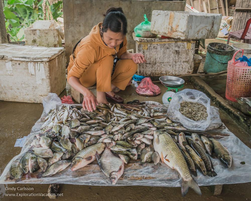 market day Northern Vietnam - ExplorationVacation