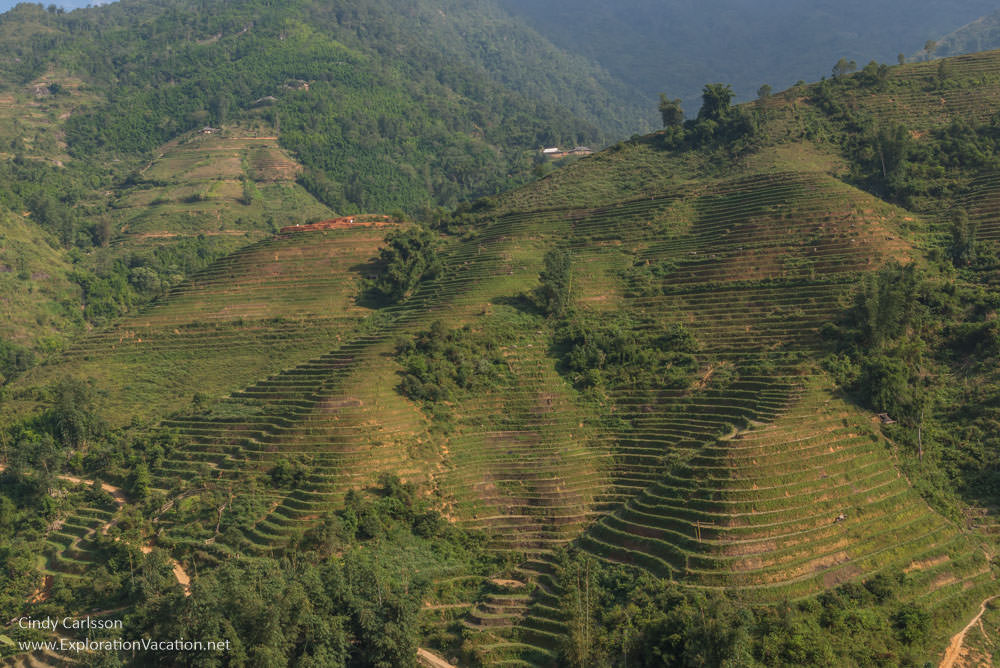 terraces near Sapa Northern Vietnam road trip - ExplorationVacation