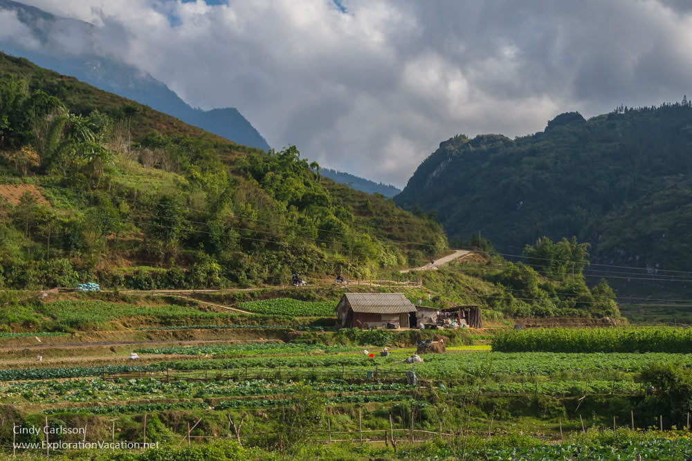 Sapa Northern Vietnam road trip - ExplorationVacation