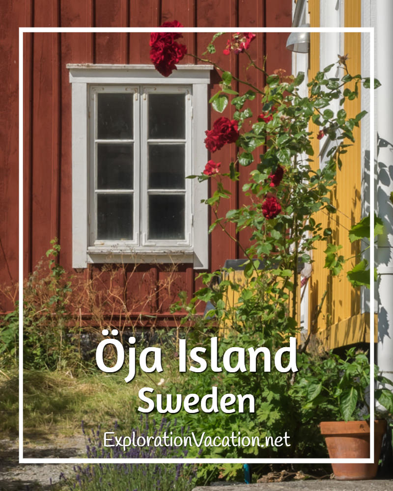A garden in #Landsort on Oja Island in Sweden's Stockholm Archipelago - ExplorationVacation #VisitSweden #summergarden