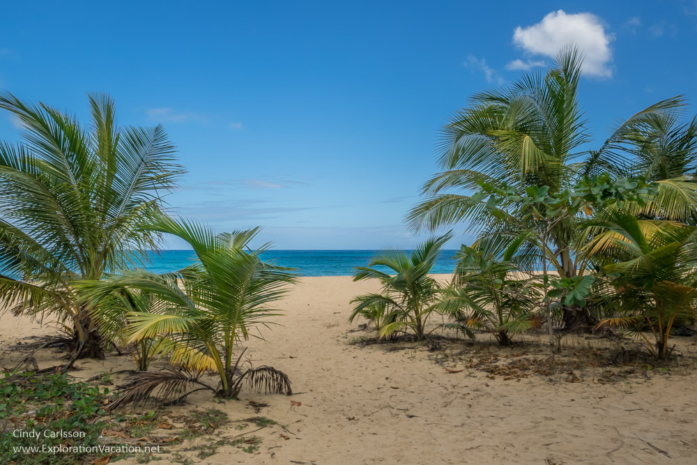 Every path in Puerto Rico seems to go to a beach - www.ExplorationVacation.net