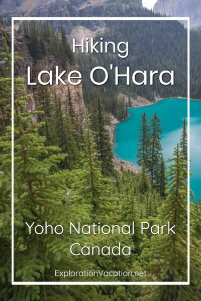 """view looking down the mountainside at a hiking trail far below with text """"Lake O'Hara Canada"""""""