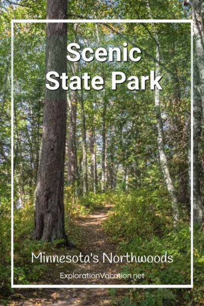 """forest trail with text """"Scenic State Park"""""""