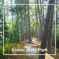 "forest trail with text ""Scenic State Park"""