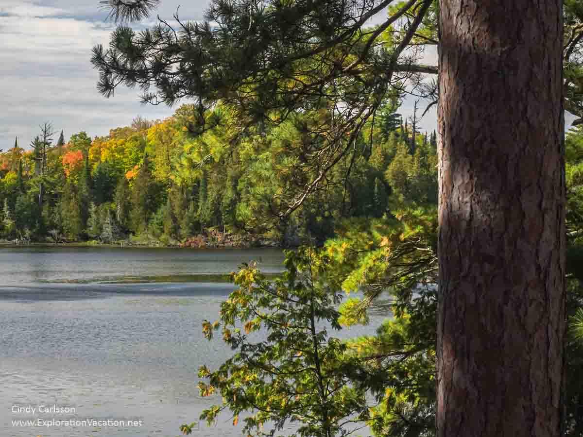 Scenic State Park in northern Minnesota - www.ExplorationVacation.net