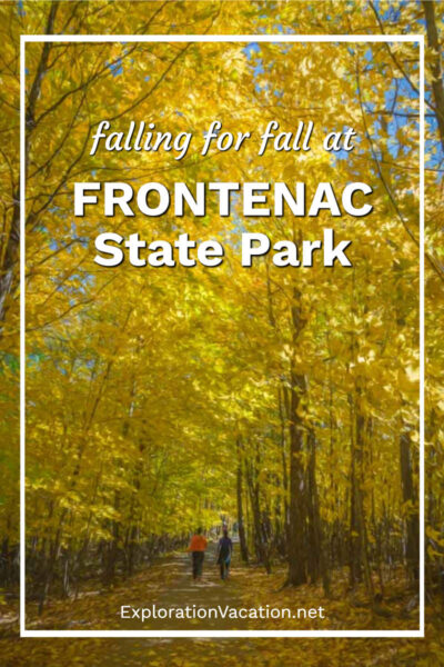 """Yellow trees over a path in a woods with text """"falling for fall in Minnesota's Frontenac State Park"""""""