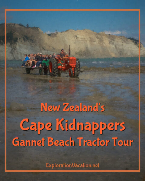 """Tractor on beach with text """"Cape Kidnappers New Zealand Gannet Beach Tractor Tour"""""""