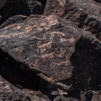 Deer Valley Petroglyph Preserve protects ancient rock art in Phoenix Arizona USA - ExplorationVacation.net
