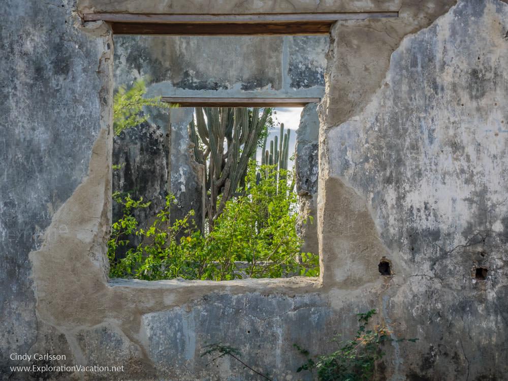 Zorgvlied Ruins in Christoffel National Park Curacao - ExplorationVacation.net