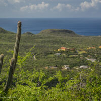 Plantation Knip scenic view along the Mountain Route in Christoffel National Park Curacao - ExplorationVacation.net