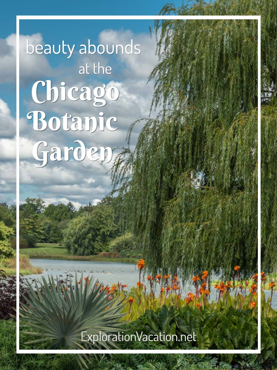"Lakeside gardens with text ""Beauty Abounds at the Chicago Botanic Garden"""