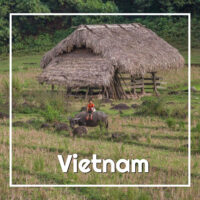 Child in field - #Vietnam itinerary from ExplorationVacation #asia