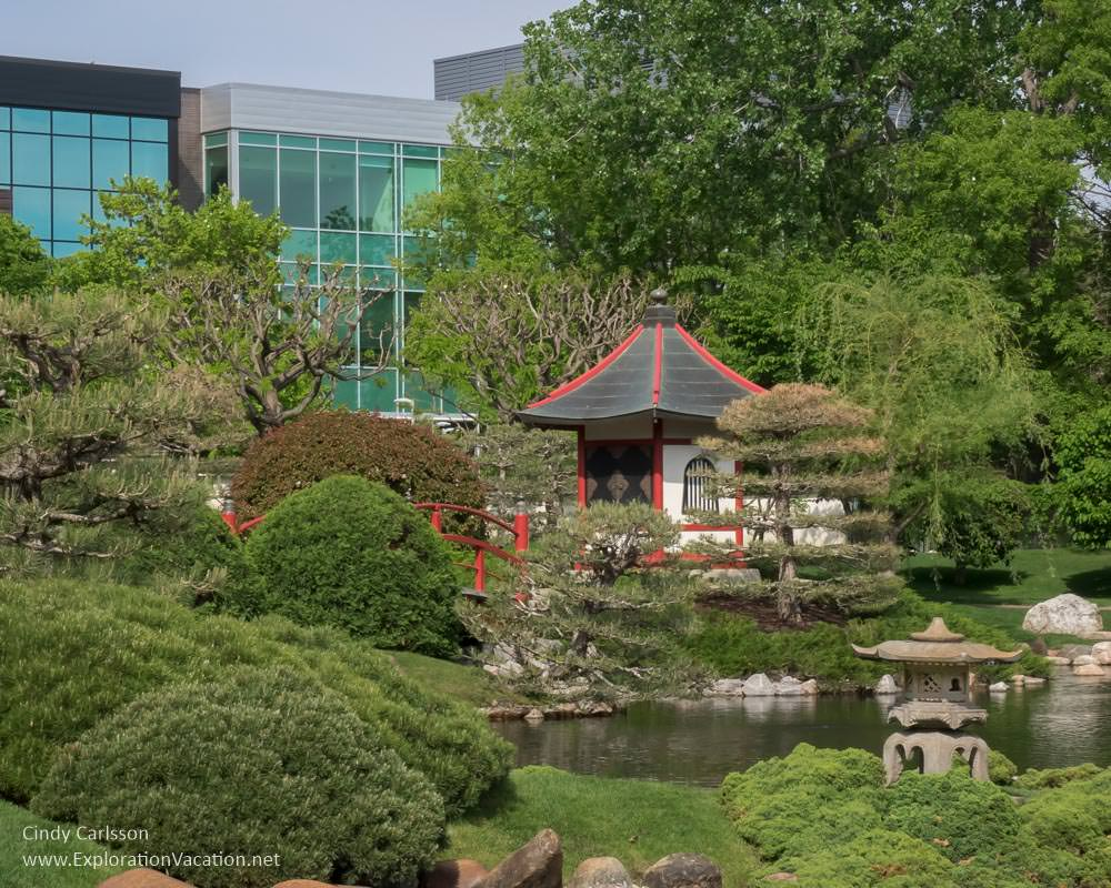 Japanese garden with Normandale Community College buildings in the background.
