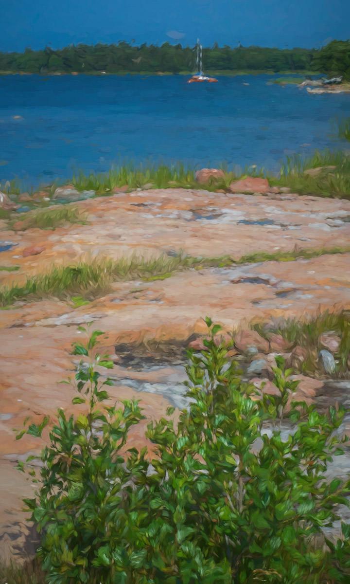 rocky shore along the sea