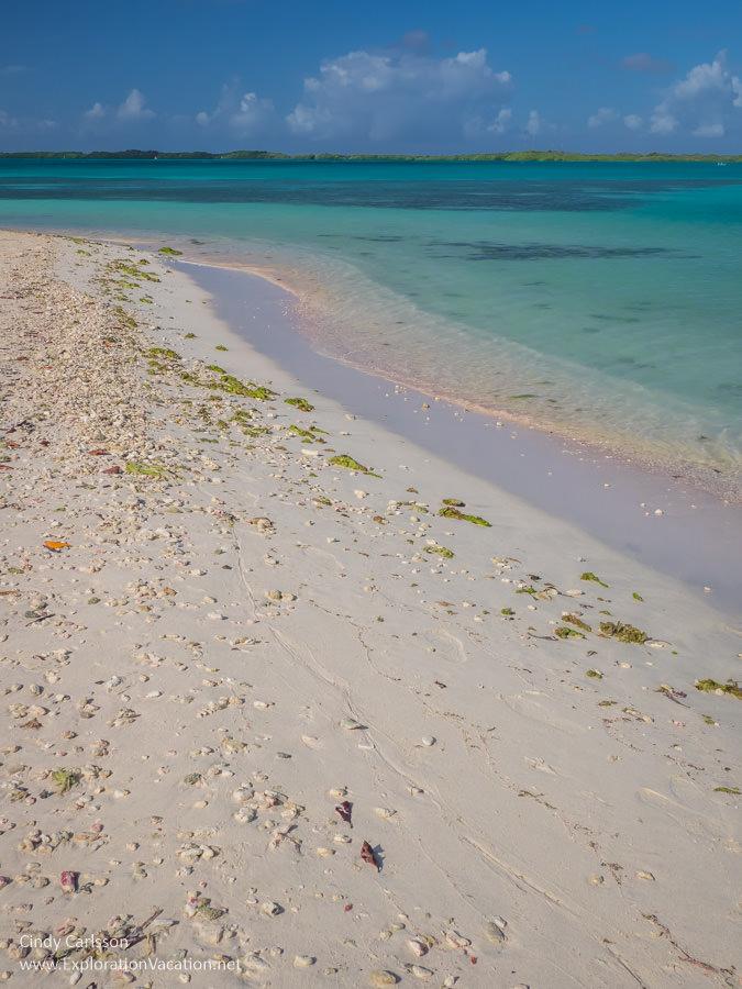 white sand beach with aqua water