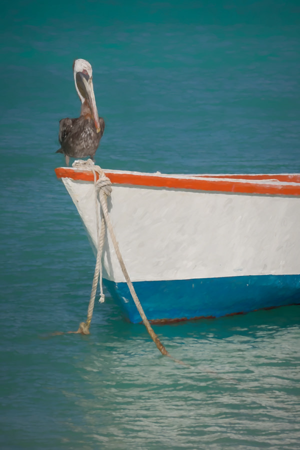 Painted picture of a pelican sitting on a fishing boat