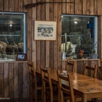dining room with windows where cows can be seen in the milking parlor