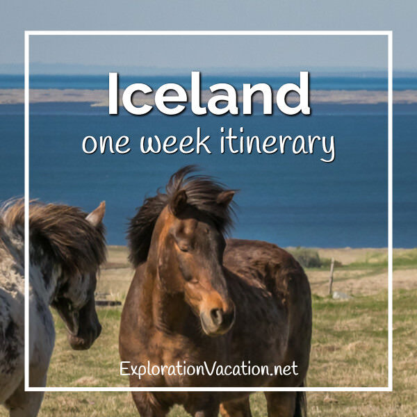 """Icelandic horses with text """"Iceland one week itinerary"""""""