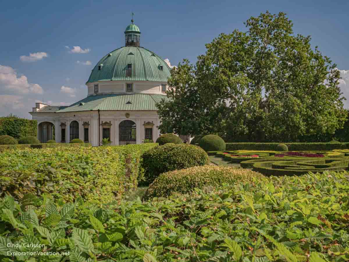 shrubbery of various heights with the rotunda in the background