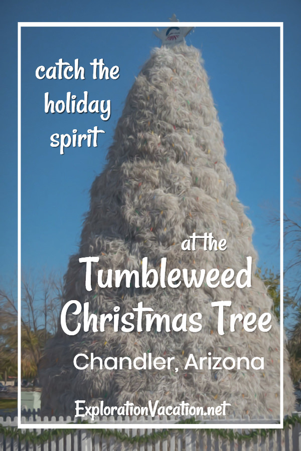 "white tumbleweed tree with text ""Catch the holiday spirit at the tumbleweed Christmas Tree"""