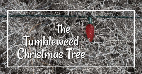 """close-up of painted tumbleweeds and Christmas lights with text """"the Tumbleweed Christmas Tree"""""""