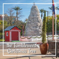"red building with large white Christmas tree and text ""the Tumbleweed Christmas Tree"""