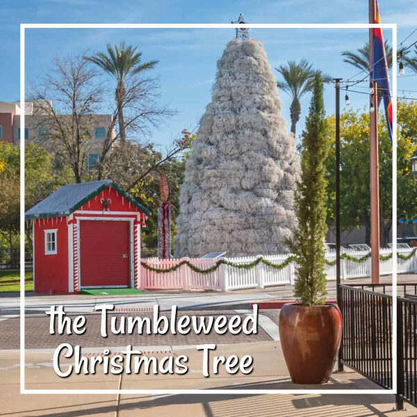 """red building with large white Christmas tree and text """"the Tumbleweed Christmas Tree"""""""