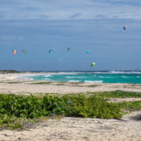 broad sandy beach with colorful kites above the sea