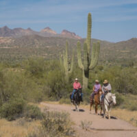 horseback riders pass a towering saguaro cactus with mountain scenery in the background