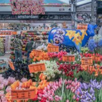 Colorful bouquets of plastic tulips and tourist souvenirs