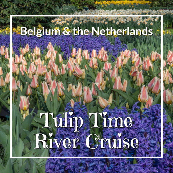 """purple hyacinth, colorful tulips, and white daffodils with text""""Belgium and the Netherlands on a Tulip Time River Cruise"""""""