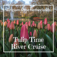 "Red tulips with text""Belgium and the Netherlands on a Tulip Time River Cruise"""