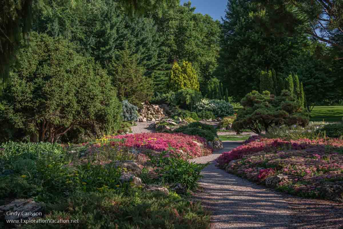 Paths and red flowers leading to conifers