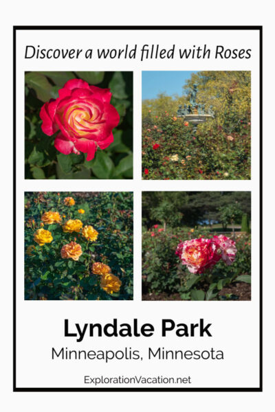 "Picture of roses with text ""Lyndale Park Rose Garden"""