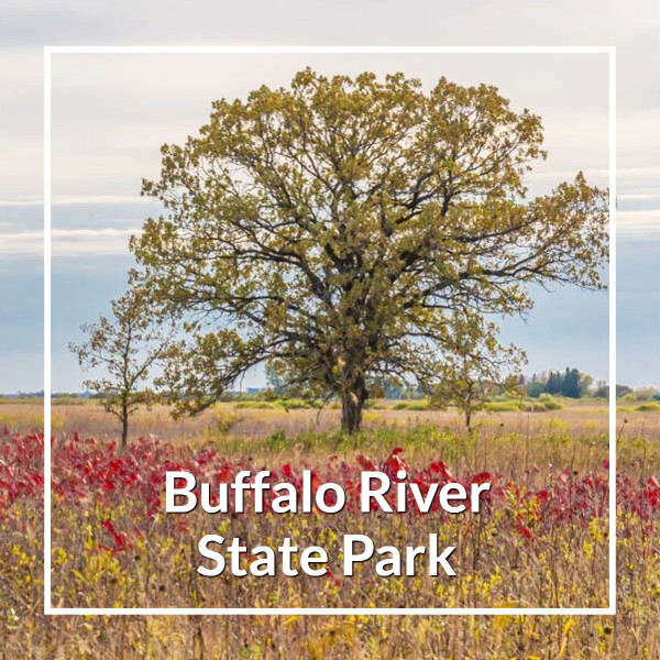 "Oak tree and prairie in fall with text ""Buffalo River State Park"""