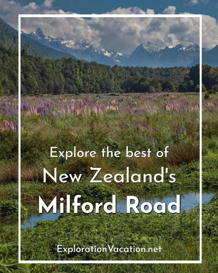 "valley with lupine and text ""Explore the best of New Zealand's Milford Road"""