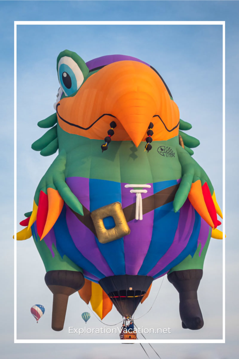 hot air balloon shaped like a pirate parrot