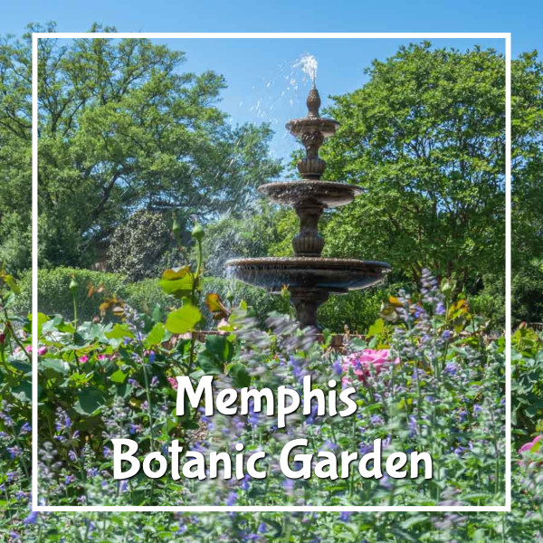 """fountain with flowers and text """"Memphis Botanic Garden"""""""